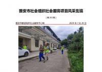社会服务项目活动风采集锦第二百零一期